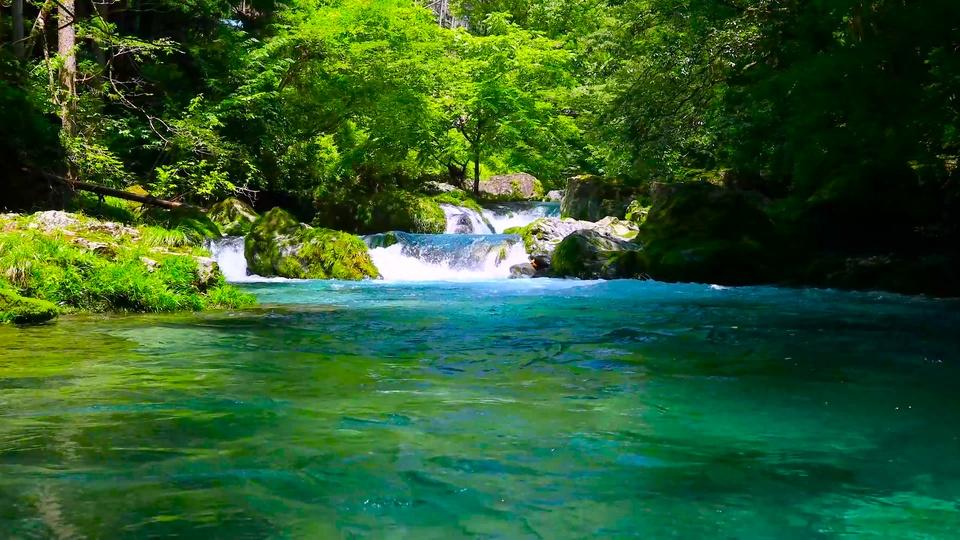 绿林间的瀑布