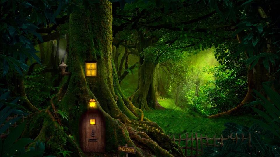 夜晚森林树屋