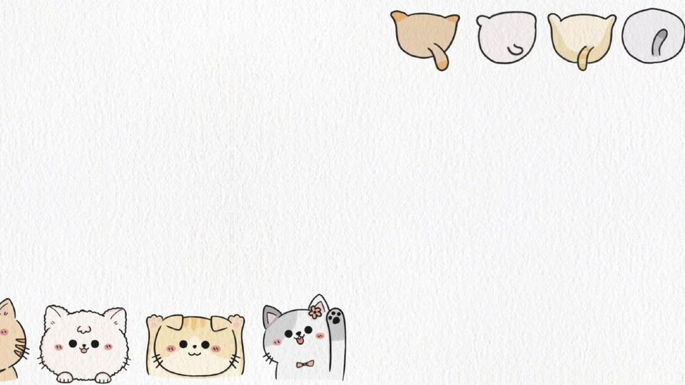 可爱猫咪简约壁纸